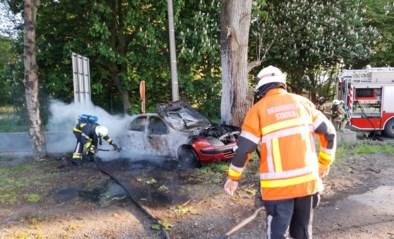 Wagen met Franse nummerplaat helemaal uitgebrand in Westrozebeke