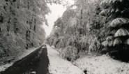 Mei wordt koud, zelfs met waterkans op sneeuw