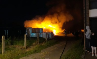 Brand op braakliggend terrein in Bornem
