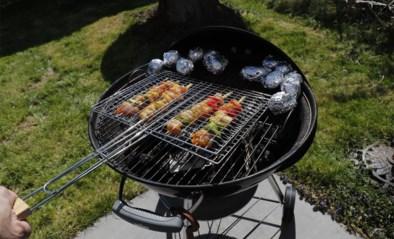 Agenten leggen barbecue met negen personen stil