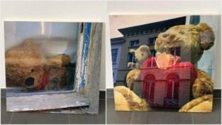 Latemse fotografe fotografeert Gentse 'coronabeertjes'