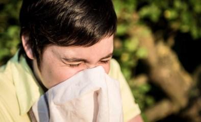 Hou die zakdoeken maar klaar: hooikoortsseizoen is van start gegaan