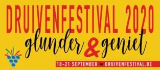 Komend Druivenfestival laat Hoeilanders glunderen en genieten