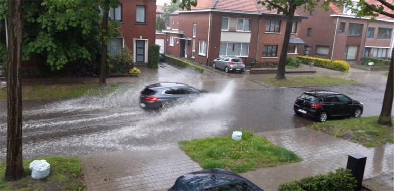 Onweer trekt over provincie Antwerpen: windhoos gefilmd in Hoogstraten