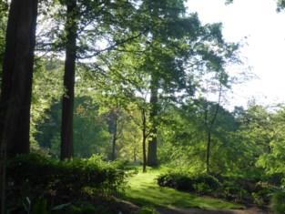 Bezoekers genieten weer van Arboretum van Wespelaar