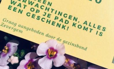 Geen bloemenmarkt maar toch bloemen voor de moeders