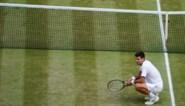 Lief zijn tegen water, bevriend met bomen en tegen een coronavaccin: de gekste kantjes van Novak Djokovic
