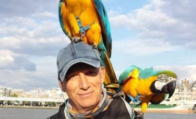 Vraag van jager voor bijkomend onderzoek afschieten papegaai afgewezen