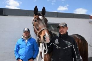 Paardenrennen door coronawurggreep op sterven na dood als nu niet wordt ingegrepen
