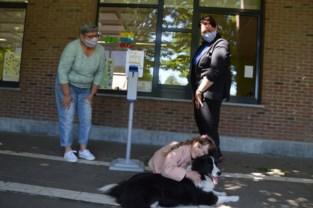 """Hier troost knuffelhond Free kindjes die even onzeker zijn: """"Je zag dat ze er deugd aan beleefden"""""""