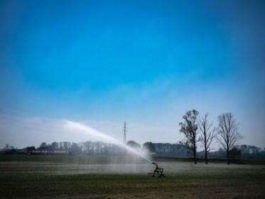 """Experts vrezen nu al voor hete zomer: """"Uitzonderlijke droogte legt fond voor hittegolven"""""""