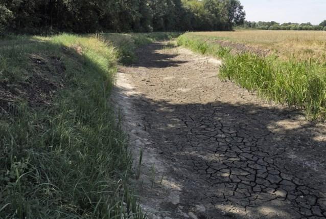 Weerstationnetjes in de bodem brengen klimaatverandering in kaart op microklimaatniveau