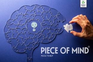 Puzzel je brein bij elkaar met stukjes van Jeugdhuis Lodejo