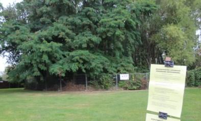 """Onteigeningen moeten plaats maken voor buurtpark: """"Meer natuur en zachte recreatie"""""""