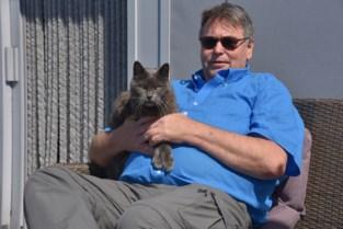'Katman' Raf springt in de bres voor katje Lee: al 50.000 (!) handtekeningen ingezameld