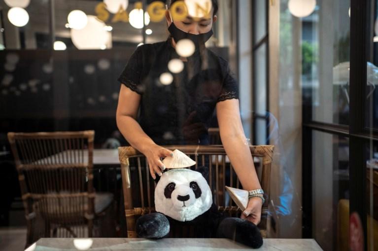 Dit restaurant gebruikt pandaberen voor 'social distancing'