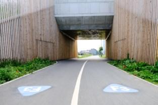 Rit naar Brussel is voortaan 800 meter korter en heel stuk veiliger dankzij afgewerkte fietstunnels