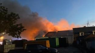 Rook- en geurhinder door hevige bedrijfsbrand: bewoners moesten ramen en deuren dichthouden