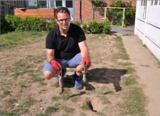 """Bruine ratten koloniseren tuinen van buurtbewoners: """"Zelfs mijn honden zijn zo bang dat ze niet meer buiten durven komen"""""""