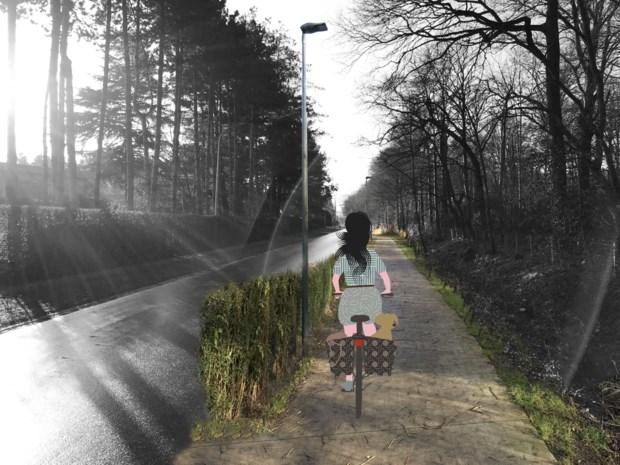 Eenrichtingsverkeer met veel ruimte voor groen, fietsers en voetgangers: gaat Zwijnaarde er zo uitzien?