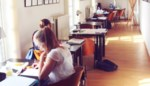 Studenten halen slag binnen: blokbeesten kunnen naar fuif- en feestzaal