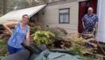 Twee maanden geleden volledig ontruimd, nu weer vaste klanten op caravanpark Siësta