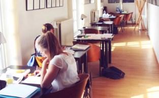Studeer eens in een exporuimte... of kinderboerderij