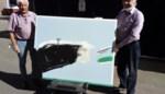 Wakkense kunstenaar schenkt Tielts ziekenhuis 'Ode aan de geneeskunde'