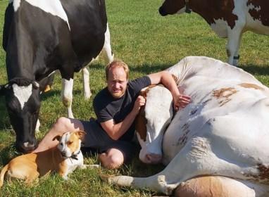 """Boer vindt gat in de markt: """"Nood aan een lekkere knuffel? Bij ons kan het zonder risico"""""""