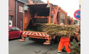 IDM denkt na over hergebruik snoeihout voor composthoop