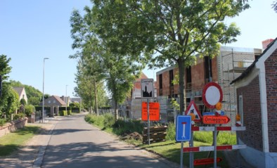 Watergroep kapt drie onstabiele bomen na werken