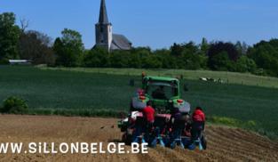 Waals-Brabant zet miscanthus in in strijd tegen erosie