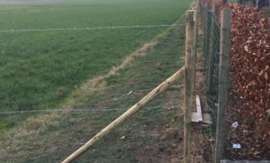 Afgesloten voetweg in Impe blijft voor wrevel zorgen bij oppositiepartij Lede Vlaams & Zinvol