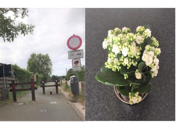 """Katrien bedankt haar hulpverleners met een bloemetje maar doet oproep: """"verwijder alstublieft één van de twee paaltjes"""""""