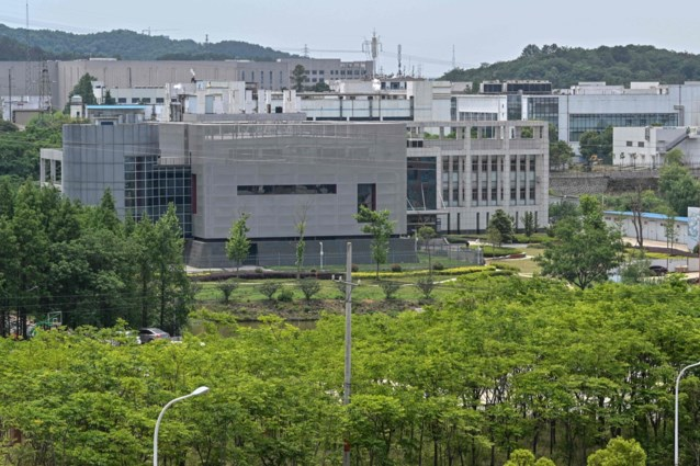 """Directrice van lab in Wuhan ontkent elke verantwoordelijkheid: """"We hebben coronavirussen van vleermuizen bekomen maar stemt maar 79,8 procent overeen met Covid-19"""""""