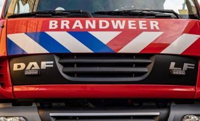 """Brandweer moet smeulend kampvuur blussen: """"Dit had evengoed een bosbrand kunnen veroorzaken"""""""