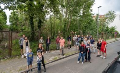 """Buurt wil 'Akkerbosje' redden:""""Het is ei zo na beschermd, maak er een wijkpark van"""""""