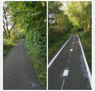 Felle discussie over belijning voor fietsers op wandelpad