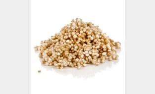 Vlaams-Brabant promoot droogteresistente gewassen zoals quinoa