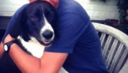 Na jarenlange speurtocht staan baasjes eindelijk oog in oog met mogelijke daders die hond Trix vergiftigden