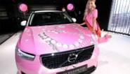 """Miss België pikt haar roze Volvo op in Aalst: """"Niet iedereen zal er zot van zijn maar ik vind hem super"""""""