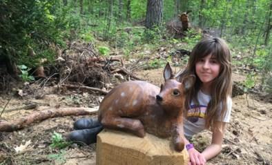 Eerste 'beestige' speelbos in Nationaal Park: klimboom en waterpoel maken het compleet