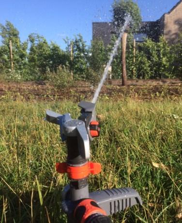 """Nakende droogte:  """"Voorlopig nog geen actie naar burgers of land-en tuinbouw"""""""