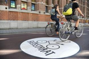 Fietsers krijgen hier meer ruimte: 60 procent van stadscentrum wordt fietszone