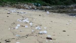 Schip verliest veertig containers vol medische spullen: mondmaskers spoelen aan op de stranden