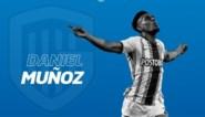Racing Genk heeft eerste aanwinst beet met Colombiaans international Munoz