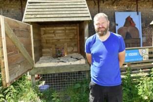 """Kippenslagveld op kinderboerderij: """"Schandalig om weerloze dieren dood te knuppelen"""