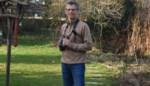 """Eerste vale gieren gespot in de Kempen: """"Het was een gelukstreffer"""""""