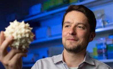 """Farmareus gaat coronavaccin maken van Belgische onderzoeker: """"Hopelijk tegen 2021 klaar"""""""