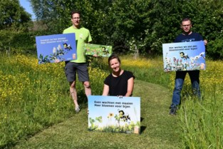 Diksmuide is bijenvriendelijkste gemeente van Vlaanderen